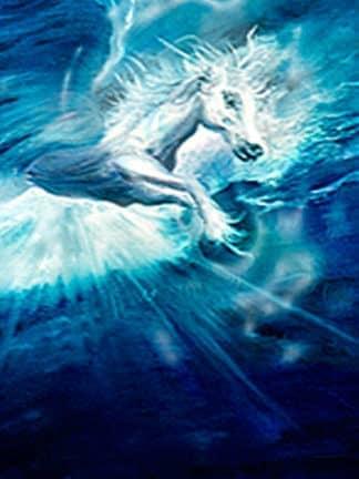 Pegasus Bernd Horak