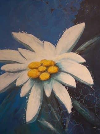 Blumen 9 Heinz Tischer